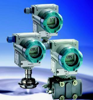 DS III系列测量表压带冲洗膜片